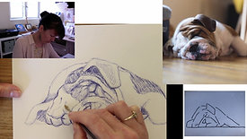 drawing a dog in pen