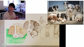 painting watercolour puppies