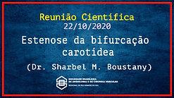 SBACV RS - Estenose da bifurcação carotídea - Dr. Sharbel Boustany