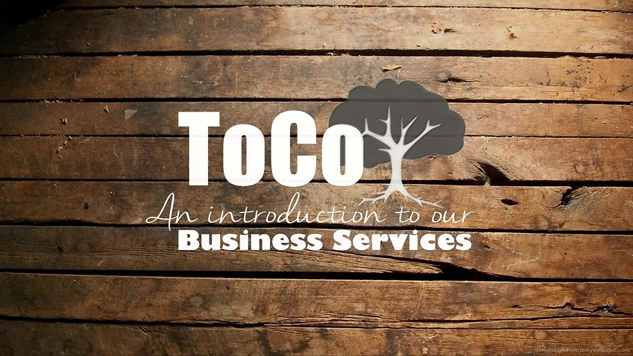 ToCo Business Services - Enabling Growth Open View