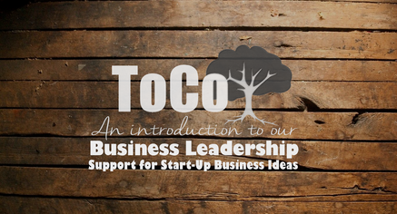 Business Leadership Support for Start-Up Ideas