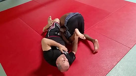 Combination of arm and leglocks