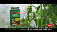 Spot dei Pisellini Primavera Findus - soggetto risotto.mov