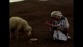 """Clip publicitar - """"Cârnații de Pleșcoi"""" (2010)"""