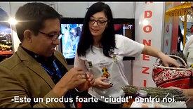 """Echipa Ciovînă Diana: """"Albinuțele mov"""", interviu cu reprezentantul unei firme de turism din Indonezia"""