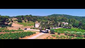 Château Ste Marguerite - Fantastic Travel