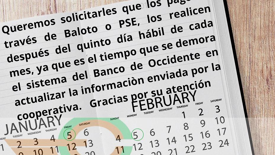 Pagos en Baloto y PSE