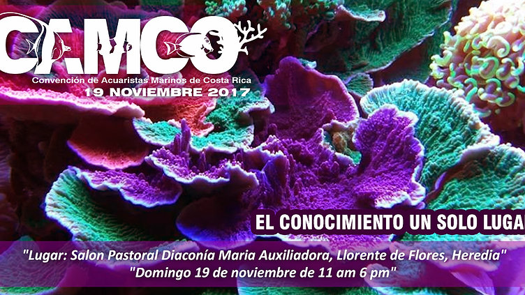 CAMCO 2017