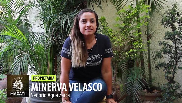 Minerva Velsaco