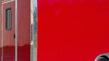 Red Fern Dynamics