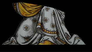 Shading the cloak
