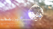 BBE - Lesson 1, What they didn't teach you about your Body