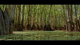 Savannah Riverkeeper