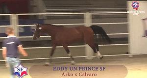 eddy un prince