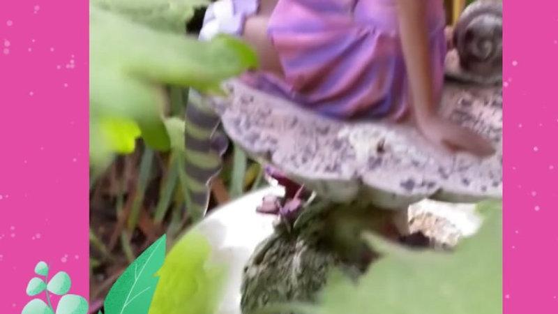 Fairy Tree Videos