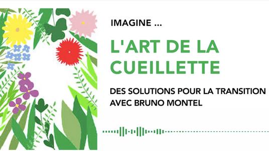 IMAGINE #21 - L'ART DE LA CUEILLETTE