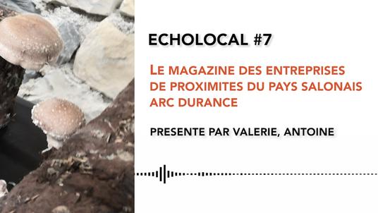 ECHOLOCAL #7 LES CHAMPIGNONS DE MARSEILLE