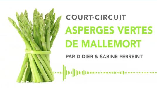 ASPERGES VERTES DE MALLEMORT