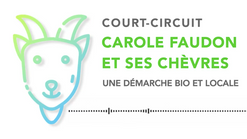 \\ COURT-CIRCUIT //