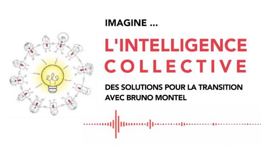 IMAGINE #16 L'INTELLIGENCE COLLECTIVE