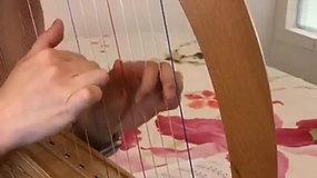 天空之城 from Beary Harpy in Ghibli World harp book