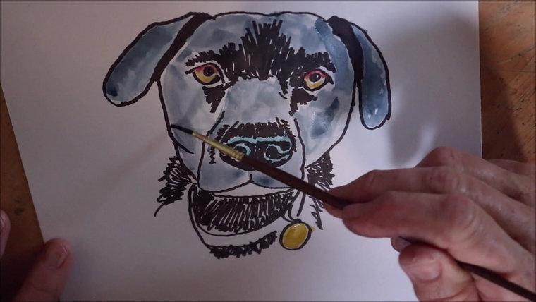 Paws Portraits