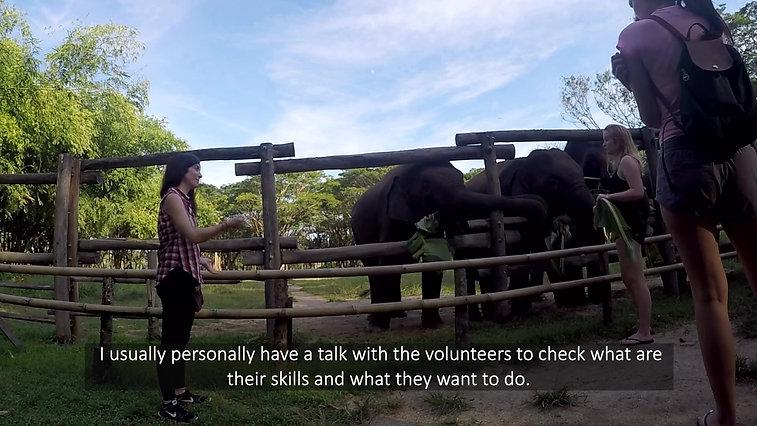 Volunteer Coordinator