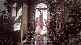 Clair & Larry Wedding Teaser-A New Beginning