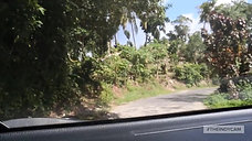 Holy_Sip_Jamaica_2