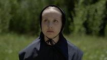 Amish Witches: Hayley Palmaer