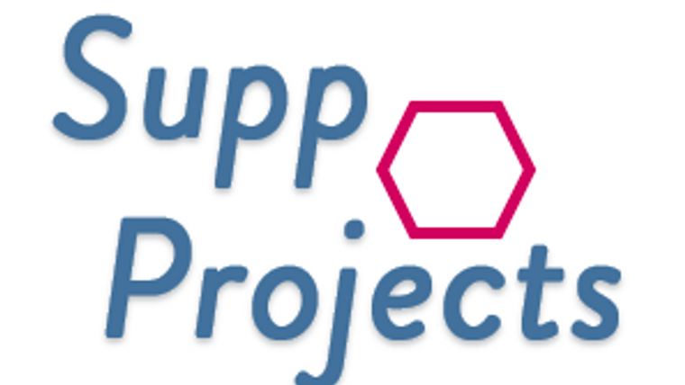 Les activités de Supp-Projects