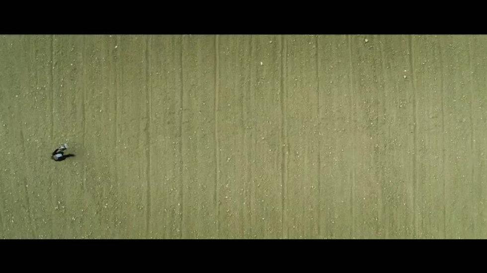 Mr. Kohl's Final Hour trailer