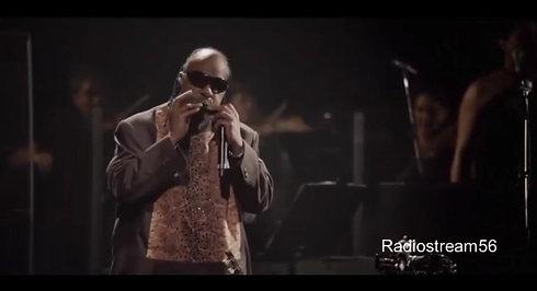 Sting & Stevie Wonder - Fragile (live)