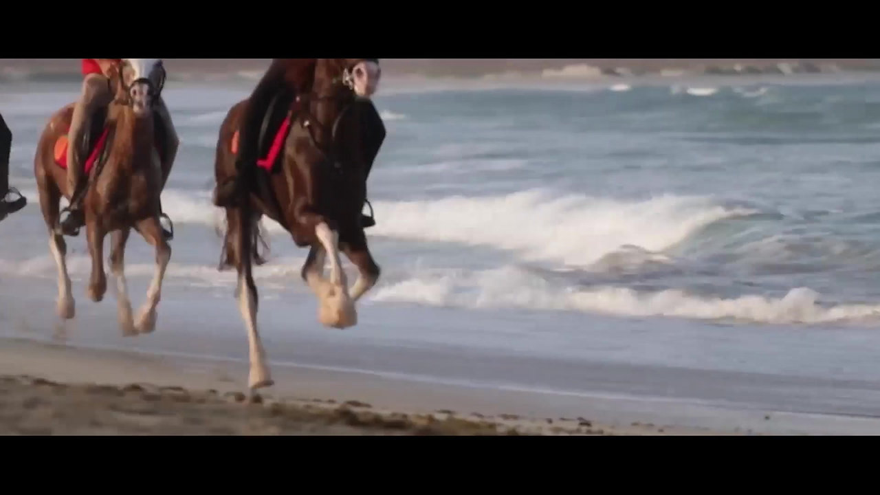 Horse Riding in Sal Island - Cape Verde with Santa Marilha Horse Excursions