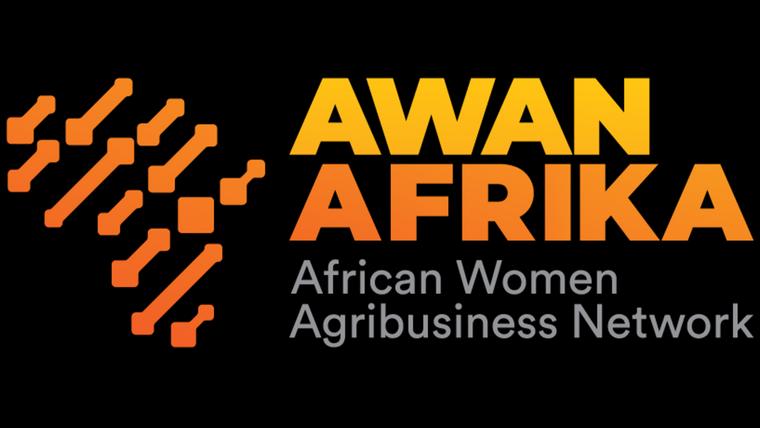 AWAN-AFRIKA WEBINARS