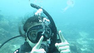 Small Jellyfish Encounter 遇见小水母