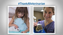 Veterinarian Appreciation Day