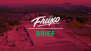 Fruxo - Pulpas, Purés y Concentrados Asépticos de Frutas