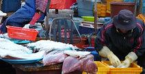LIvelihood at Jalgachi Market Busan 2017