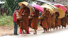 moines de la foret extrait