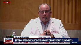 I CAN'T KEEP DOING THIS_ Doctor pleads for review of data during COVID-19 Senate hearing