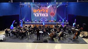 Fantasy- Symphonette Raanana Orchestra