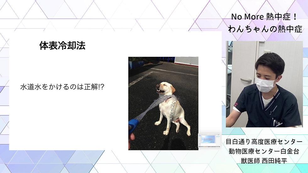 No More 熱中症!!part2