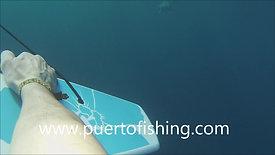Subwing en Puerto E scondido