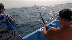 Fishing two Sailfish