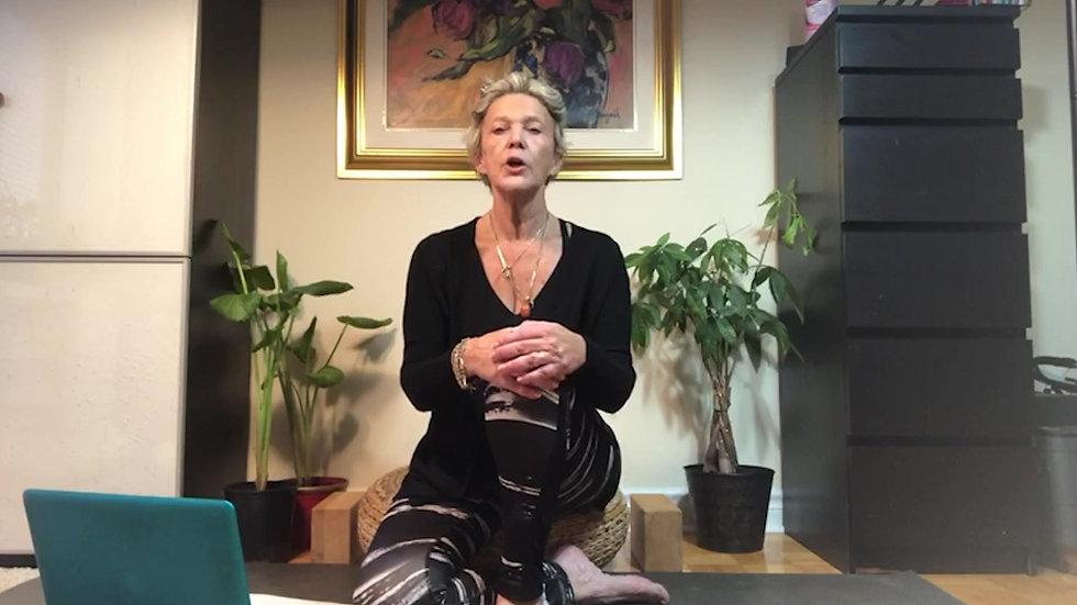 Indigo Tribe Yoga Online Yoga Classes
