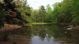 The lake 4K-2