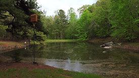 The Lake  4K-3