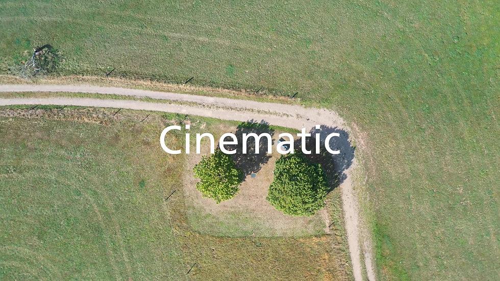 ENP_Film_Website_Fin