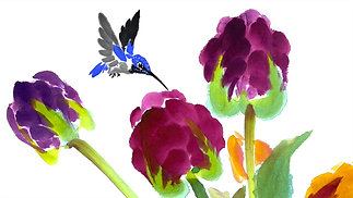Tulips & Hummingbird-6-27-20-Lucy Wang